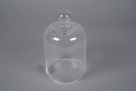 A256I0 Cloche en verre D12cm H20cm