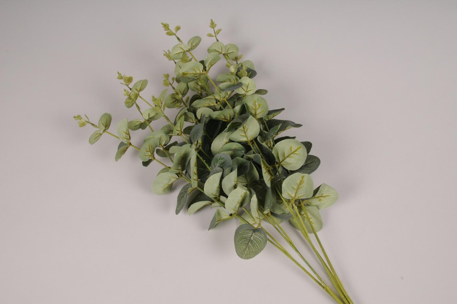 a268nn Eucalyptus artificiel vert H60cm