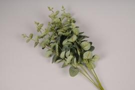 a268nn Piquet d'eucalyptus artificiel vert H60cm