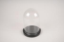 A281I0 Cloche verre plateau bois noir D12cm H16cm