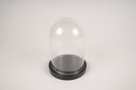 A281I0 Glass dome with wooden tray D12cm H16cm