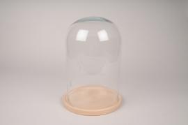 A292I0 Cloche en verre avec plateau bois D21cm H30cm