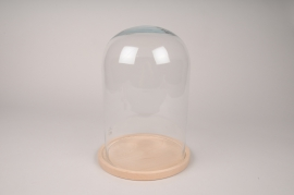 A292I0 Glass dome with wooden tray D21cm H30cm