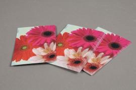 A295MQ Paquet de 15 cartes