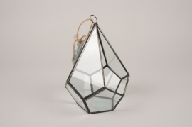 A309I0 Glass terrarium D13cm H20cm