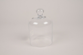 A312I0 Glass dome D10cm H15cm