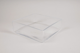 A315I0 Glass square bowl 25x25cm H8cm