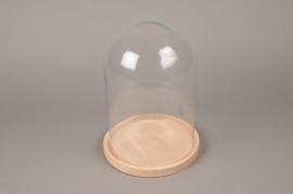 A353DQ Cloche en verre avec plateau bois D21.5cm H30cm