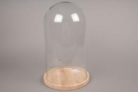 A354DQ Cloche en verre avec plateau bois D23.5cm H39cm