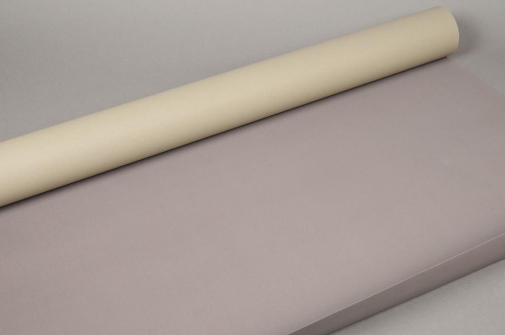 A361IX Rouleau de papier offset marron / taupe 80cm x 50m