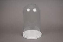 A368DQ Cloche en verre avec plateau bois D23.5cm H39cm