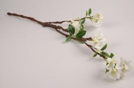 a370nn Branche de cerisier artificiel blanc H76cm