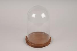 A371DQ Cloche en verre avec plateau bois D21.5cm H30cm