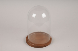 A371DQ Glass dome with wooden tray D21.5cm H30cm