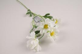 a378nn White artificial daisy H60cm