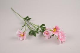 a381nn Pink artificial daisy H60cm