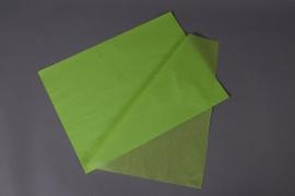A381QX Paquet de 480 feuilles papier de soie vert pomme 50x75cm