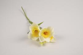 a382nn Narcisse artificielle crème H36cm