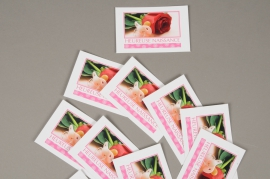A401MQ Pack of 15 postcards Heureuse Naissance