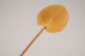 a422nn Feuille de palme artificiel jaune H75cm