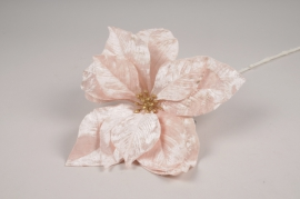 a428nn Pink velvet artificial poinsettia H70cm