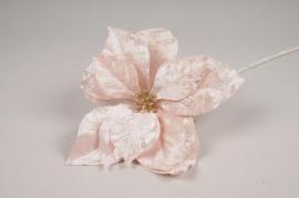 a428nn Poinsettia artificielle en velours rose H70cm