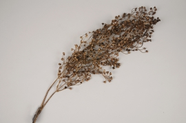 a450nn Copper artificial senecio plant H97cm