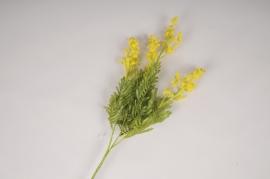 a470nn Mimosa artificiel jaune H70cm