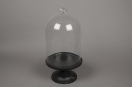 A530UO Cloche en verre avec plateau D25cm H52cm