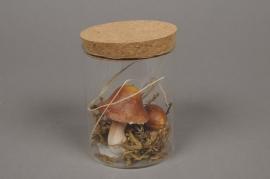 A552QB Pot en verre avec champignon D8cm H11cm