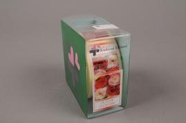 A564MQ Box of 500 adhesive labels plaisir d'offrir