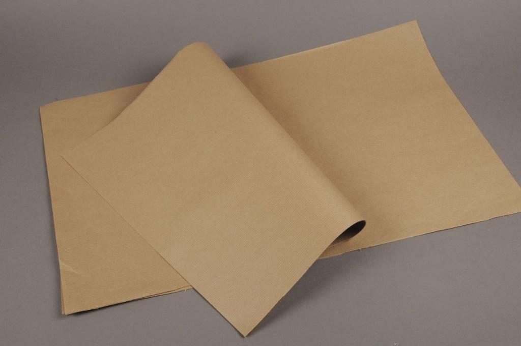 A585QX Rame de 250 feuilles papier kraft naturel 60x80m