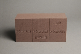 A682QV Box of 20 brick of biodegradable floral foam