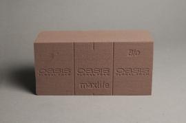 A682QV Box of 20 brick of biodegradable floral foam