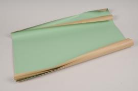A702QX Rame de 250 feuilles papier kraft vert 60cm x 40cm