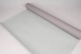 A849QX Rouleau de papier kraft gris / vert 80cmx50m