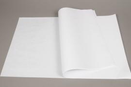 A936QX Rame de 250 feuilles papier kraft blanc 40 x 60cm