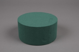 A991QV Pack of 4 wettable foam ideal cylinder D14cm