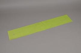 A997QX Paquet 100 étuis vert L16cm H80cm