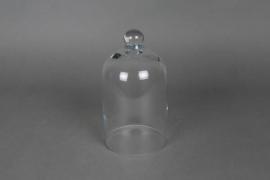 A998W3 Cloche en verre D10cm H20cm