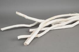 aa06mi Paquet de 6 dulas blancs 100cm