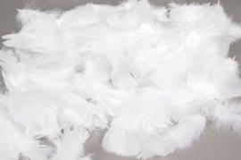 al00ek Boite de plumes de dinde blanches 50gr