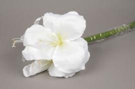 x160fd Amaryllis artificiel blanc H70cm