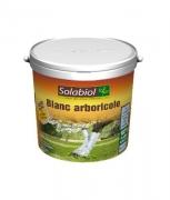 A097SU Arboreal white pot 1L