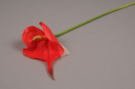 x243fp Artficifial red anthurium H50cm