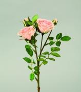 x198fp Tige 5 roses artificielles saumon H37cm
