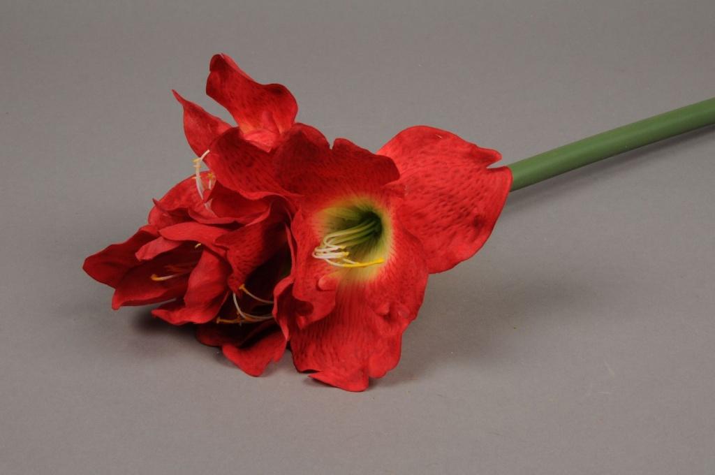 x241fp Artificial red amaryllis H70cm