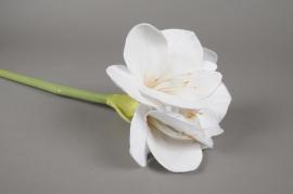 x353mi Artificial white amaryllis H60cm