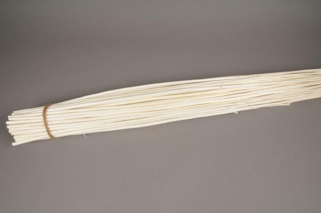 ax08sx Osier écorcé blanchi H120cm