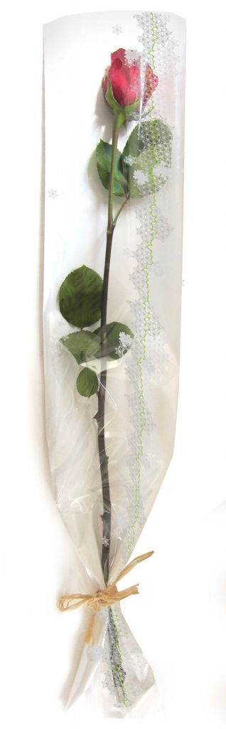 B122QX Pack of 100 flower covers clear and white 16cm H80cm